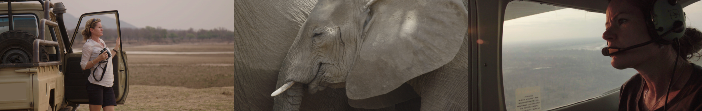 Tusk – Advancing Conservation Across Africa